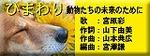 Himawarimusic_3